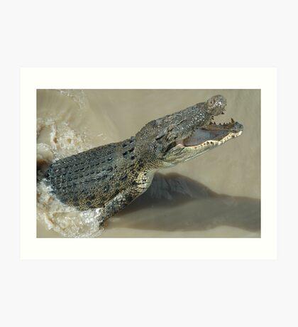Jumping crocodile Art Print
