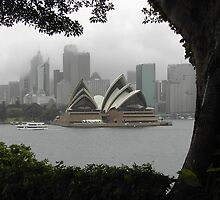 View from Kirribilli House by Antoine de Paauw