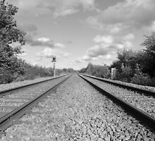 The Tracks  by kingssummers