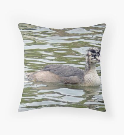 A Greater Crested Grebe Chick Throw Pillow