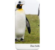 Three king penguins iPhone Case/Skin