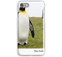 Three king penguins iPhone Case/Skin