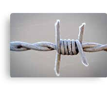 Barbed Wire Frost Canvas Print