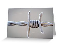 Barbed Wire Frost Greeting Card