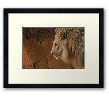 The Gentle King Framed Print