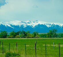 Beartooth Mountains by Ashley Schneider