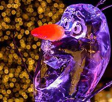 Ice Man by LudaNayvelt
