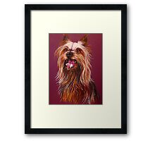 """Trouble"" A Portrait Of A Yorkshire Terrier Framed Print"
