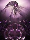 Shades of Purple by Karri Klawiter