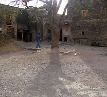 Shadows of the past-the fort in ruins by nisheedhi