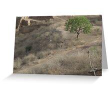Lone tree on a bleak landscape Greeting Card