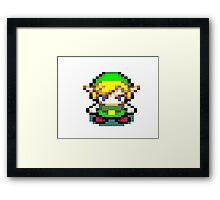 Link Legend of Zelda Framed Print