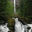 Watson Falls by Nikki Collier