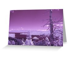 IR Emerald Bay Greeting Card