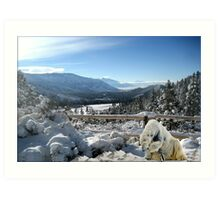 877-Visitor from the Cold Art Print