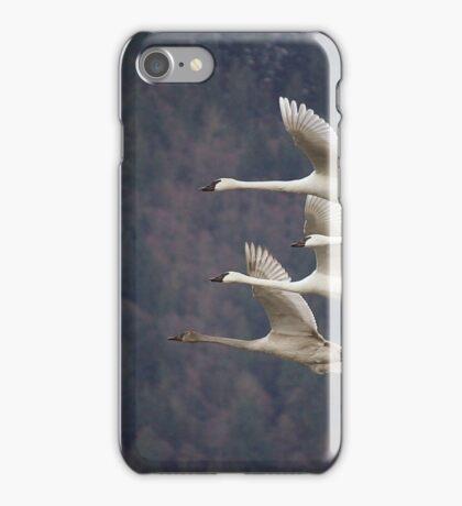 Trumpeter Swans iPhone Case/Skin