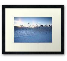 Winter calmness Framed Print