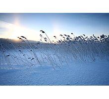 Winter calmness Photographic Print
