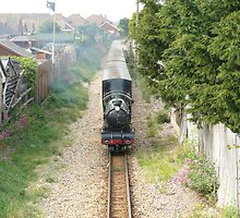 Hythe & Dymchurch Miniture Railway by patroc