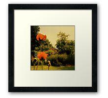 Poppies In Sunlight 02 Framed Print