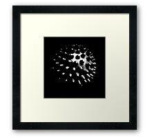 Black and grey, photo, spike ball, man cave art Framed Print