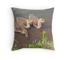 Baby Goslings Throw Pillow