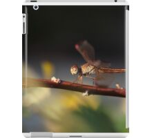 Dragonfly Stillness iPad Case/Skin