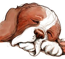 Sleeping Springer by DebStuckey