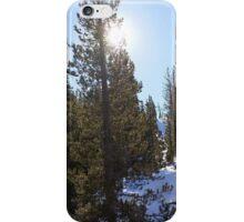 Snowy Scene 5 iPhone Case/Skin