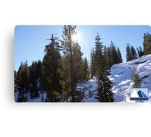 Snowy Scene 5 Canvas Print