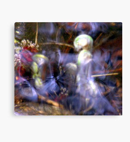 Aquatic Angels Canvas Print