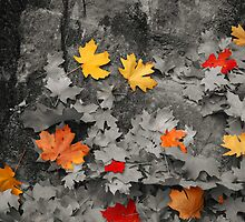 Black and White Leaves #3 by WanderLinArts