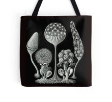 Ernst Haeckel Slime Mold illustrations from 1900 Tote Bag