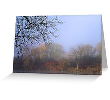 Endless Colors of Fall Greeting Card