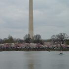 Washington Monument by picart