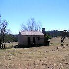 Old Hut by Ian McKenzie