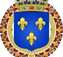 Kingdom of France Coat of Arms (1515-1589) by PattyG4Life