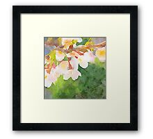 White Cherry Blossoms Digital Watercolor Painting 2 Framed Print
