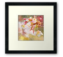 White Cherry Blossoms Digital Watercolor Painting 4 Framed Print