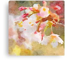White Cherry Blossoms Digital Watercolor Painting 4 Canvas Print