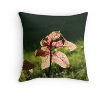 Inner Happiness Throw Pillow