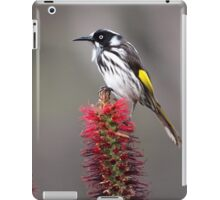 New Holland Honeyeater iPad Case/Skin