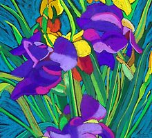 Mixed Iris by marlene veronique holdsworth
