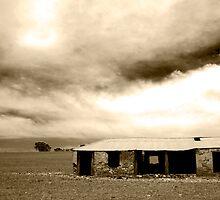 Abandoned House, Clare by Elana Bailey