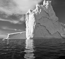 Iceberg by Simon Coates