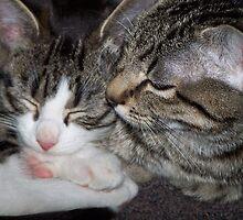 A Love Between Siblings by Kirsten H