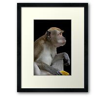The Banana Thief Framed Print