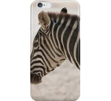 zebra at the zoo iPhone Case/Skin