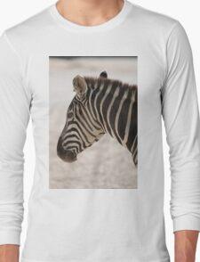 zebra at the zoo Long Sleeve T-Shirt
