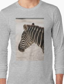 zebra at the zoo Long Sleeve T-Shirt